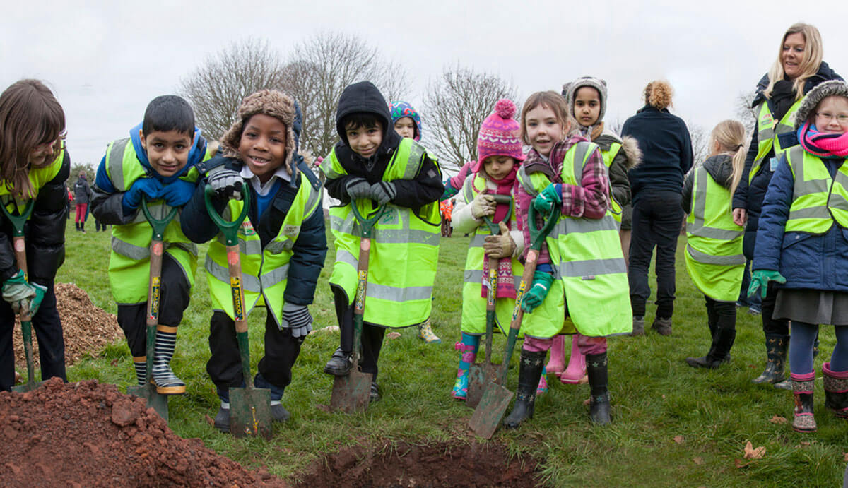 Helping Young Planting